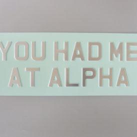 You Had Me At Alpha Metal Vintage Wall Plate